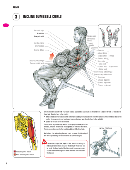 The Anatomy Coloring Book 3rd Edition Strength Training Frederic Delavier
