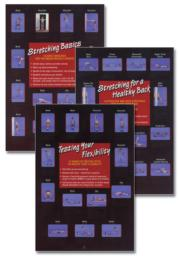 Stretching/Flexibility Posters Set