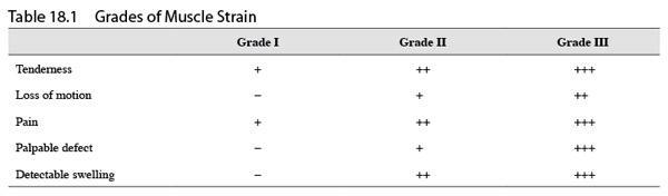Strain Grade Muscle Strain Grades