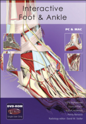 Interactive Foot and Ankle, 2009 Release