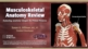 Musculoskeletal Anatomy Review Cover