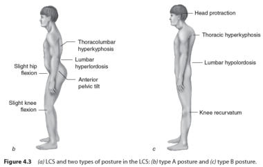 How long does it take to heal a hip flexor strain yoga ...