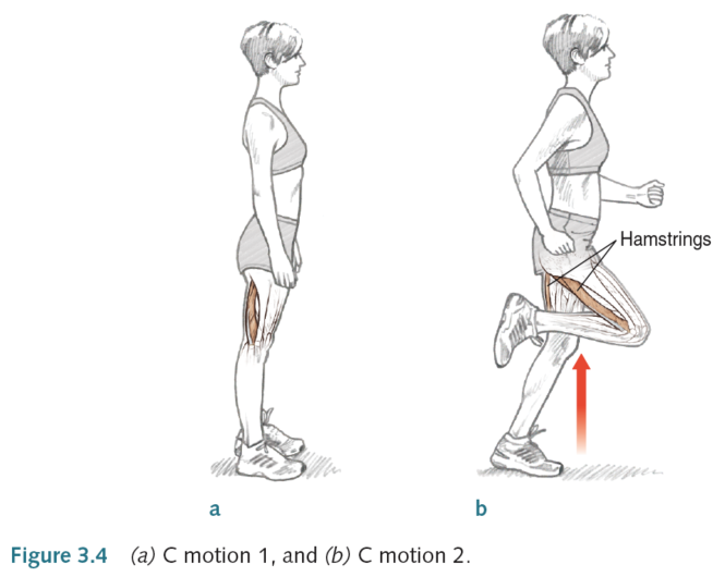 Drills to improve running form