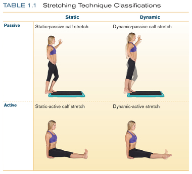 types of stretches