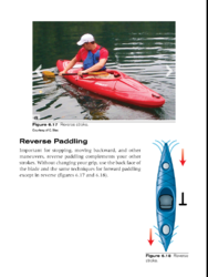 Reverse Paddling Screenshot