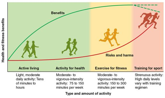 Clow Physical Activity And Mental Health Physical Activity Guidelines