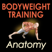 Bodyweight Training Anatomy-iPhone