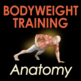 Bodyweight Training Anatomy-iPhone Cover