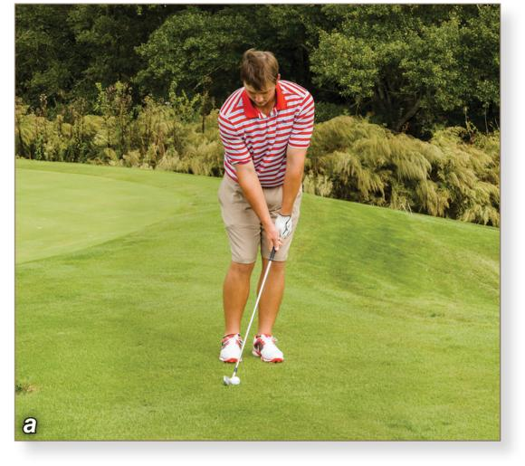 Golf: Steps to Success, Second Edition: Chip Shots