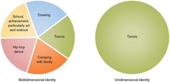 Figure 10.4 Multidimensional versus unidimensional identity pie.