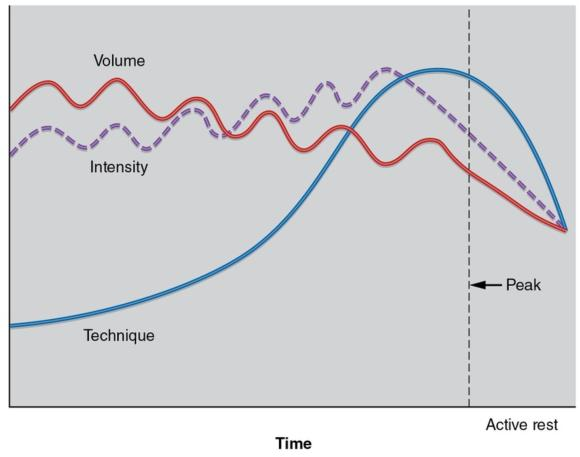 Figure 15.2 The model of undulating periodisation.