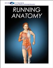 Running Anatomy Online CE Course