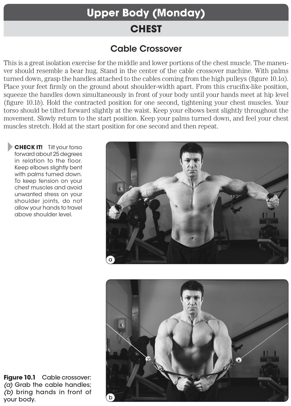 Nick Evans Bodybuilding Anatomy Pdf