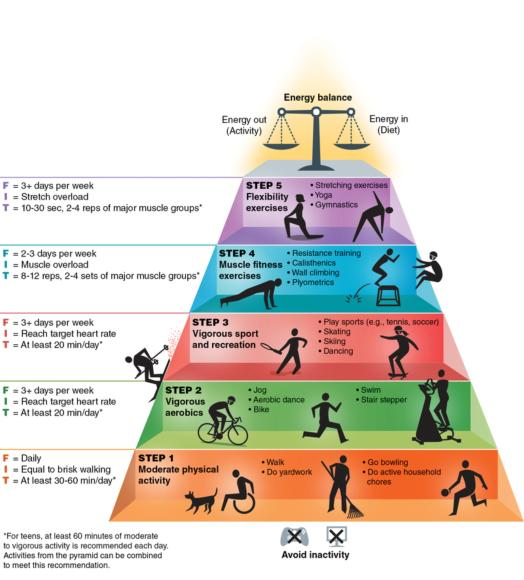 Figure 5.2 The new Physical Activity Pyramid for Teens.